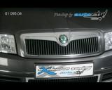 Škoda Superb - Lišta masky - chrom 3/02 - 8/06 (Autostyl Janko)