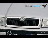 Škoda Octavia 2001 - Lišta masky - černý desén (Autostyl Janko)
