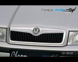 Škoda Octavia 2001 - Lišta masky - pro lak (Autostyl Janko)