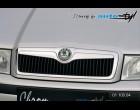 Škoda Octavia 2001 - Lišta masky - chrom (Autostyl Janko)