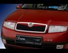 Škoda Fabia - Lišta masky - pro lak (Autostyl Janko)