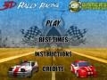 Online hra - 3D Rallye Racing